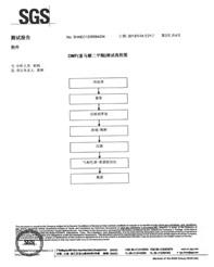 尼科环保富马酸二甲酯检验报告003